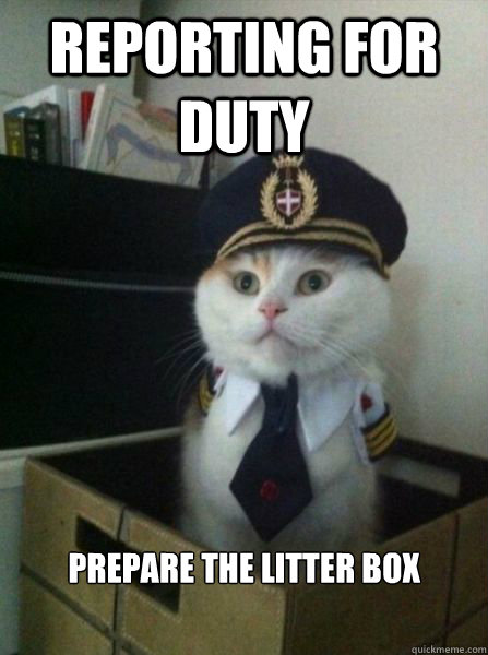 Reporting for duty prepare the litter box  - Reporting for duty prepare the litter box   Important Message from Captain Cat