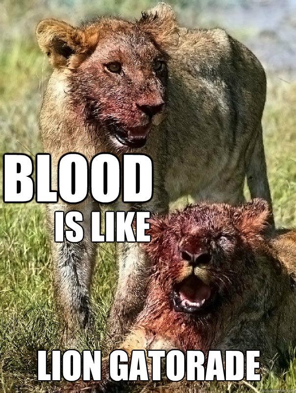 37763bdab045d7232fad66edb6e916868f42a129ea23984f96ea3d73f15af527 bloody lions memes quickmeme,Lions Meme