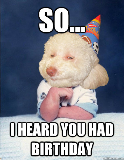 so... i heard you had birthday  birthday dog