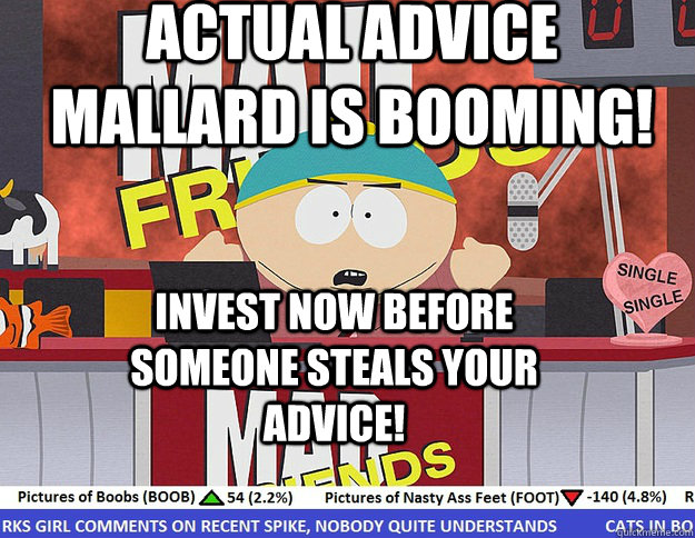 Actual Advice mallard is booming! Invest now before someone steals your advice!