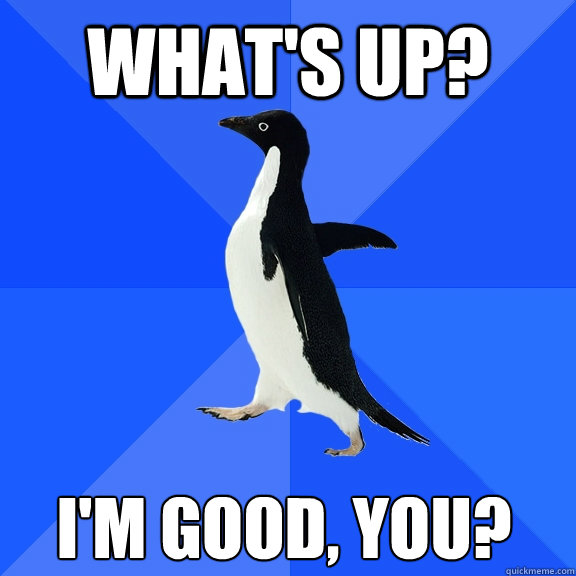 what's up? i'm good, you? - what's up? i'm good, you?  Socially Awkward Penguin