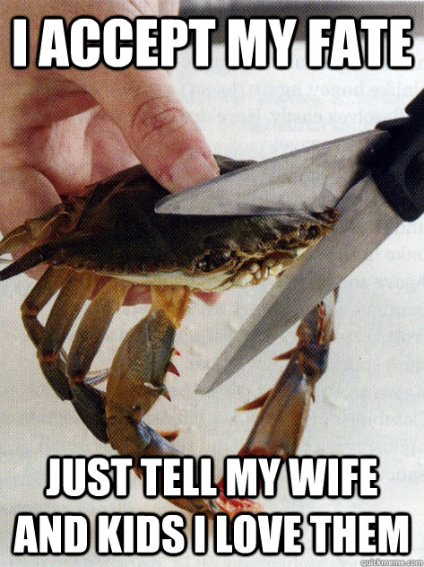 i accept my fate just tell my wife and kids i love them optimistic crab