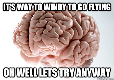 it's way to windy to go flying Oh well lets try anyway - it's way to windy to go flying Oh well lets try anyway  Scumbag Brain