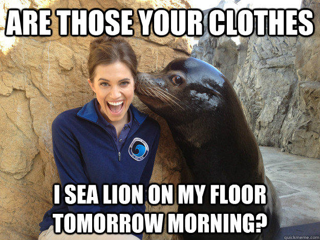 are those your clothes i sea lion on my floor tomorrow morning?  Crazy Secret