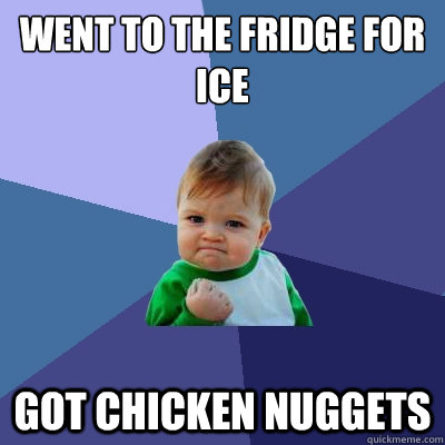 WENT TO THE FRIDGE FOR ICE GOT CHICKEN NUGGETS  - WENT TO THE FRIDGE FOR ICE GOT CHICKEN NUGGETS   Success Kid