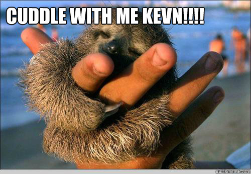 CUDDLE WITH ME KEVN!!!!          ♥   cute baby sloth