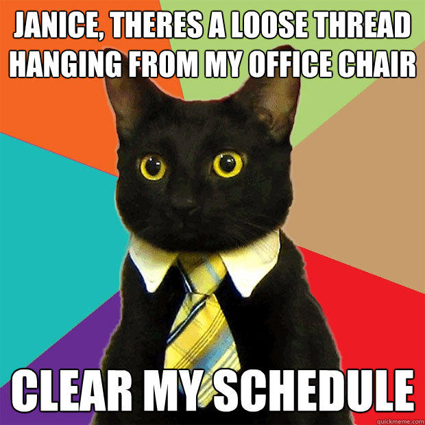 Janice, theres a loose thread hanging from my office chair Clear my schedule - Janice, theres a loose thread hanging from my office chair Clear my schedule  Business Cat