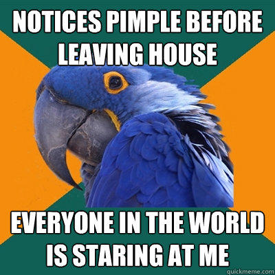 notices pimple before leaving house everyone in the world is staring at me - notices pimple before leaving house everyone in the world is staring at me  Paranoid Parrot