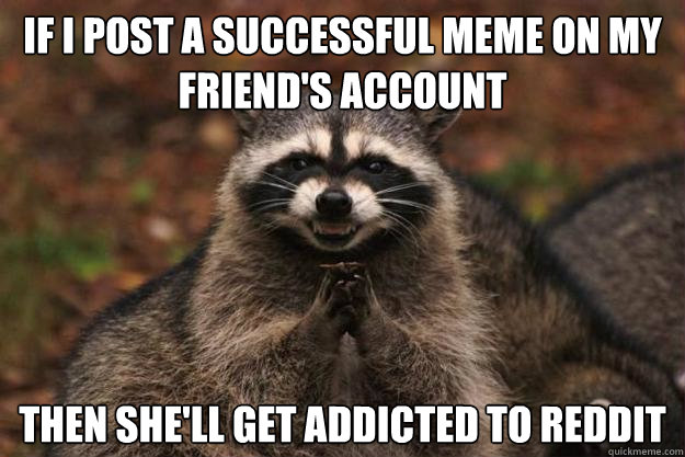 If I post a successful meme on my friend's account Then she'll get addicted to reddit - If I post a successful meme on my friend's account Then she'll get addicted to reddit  Evil Plotting Raccoon