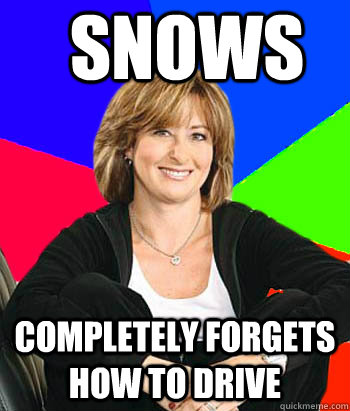 snows completely forgets how to drive - snows completely forgets how to drive  Sheltering Suburban Mom