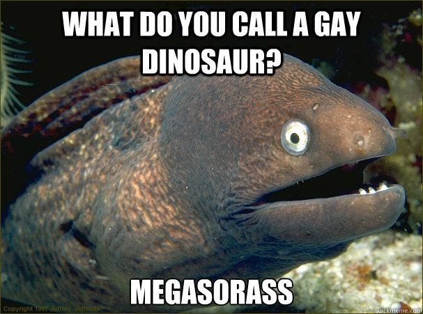 What do you call a gay dinosaur? Megasorass - What do you call a gay dinosaur? Megasorass  Bad Joke Eel