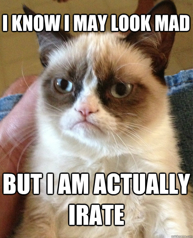 I know i may look mad but i am actually irate - I know i may look mad but i am actually irate  Grumpy Cat