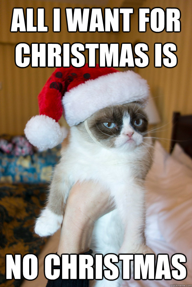 All I want for christmas is no christmas - All I want for christmas is no christmas  Grumpy xmas