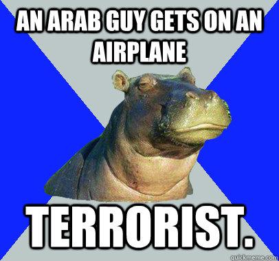 An Arab guy gets on an airplane  Terrorist.   Skeptical Hippo