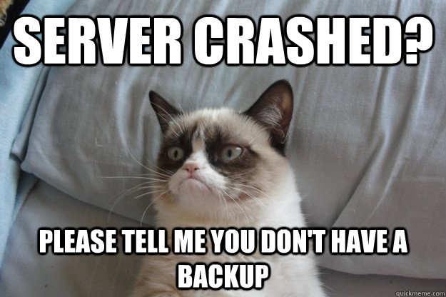 386faf5210648eaae025c7af70e37be510a66002dd2b382b10d7b3683c3df309 server crashed? please tell me you don't have a backup misc,Backup Funny Memes