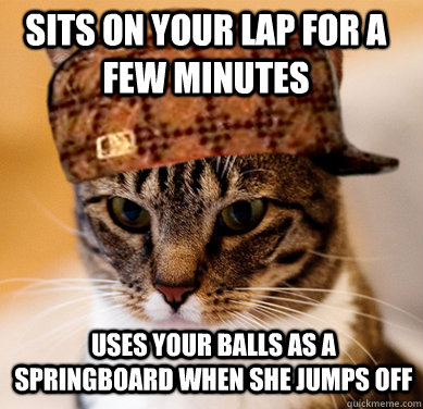 Sits on your lap for a few minutes Uses your balls as a springboard when she jumps off - Sits on your lap for a few minutes Uses your balls as a springboard when she jumps off  Scumbag Cat