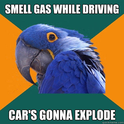 smell gas while driving car's gonna explode - smell gas while driving car's gonna explode  Paranoid Parrot