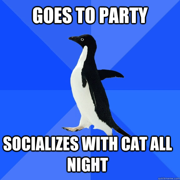 goes to party socializes with cat all night - goes to party socializes with cat all night  Socially Awkward Penguin