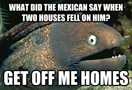 What did the Mexican say when two houses fell on him? get off me homes