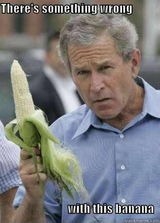 -      Banana Bush
