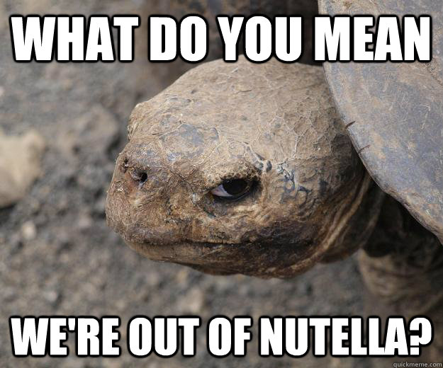 Funny Meme Mean : What do you mean we re out of nutella murderturtle