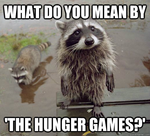 What do you mean by  'The Hunger Games?' - What do you mean by  'The Hunger Games?'  Curious Raccoon