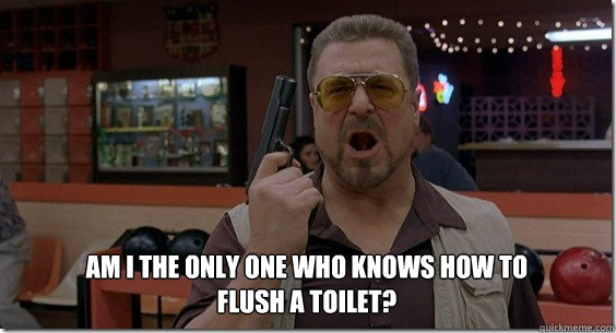 Am i the only one who knows how to flush a toilet?