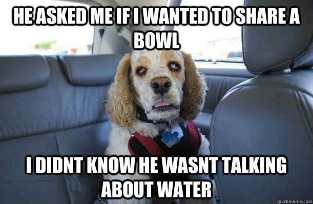 He asked me if i wanted to share a bowl I didnt know he wasnt talking about water - He asked me if i wanted to share a bowl I didnt know he wasnt talking about water  10 Dog