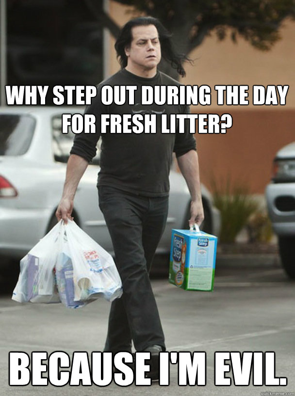 Why step out during the day for fresh litter? because I'm evil.  DANZIG KITTY