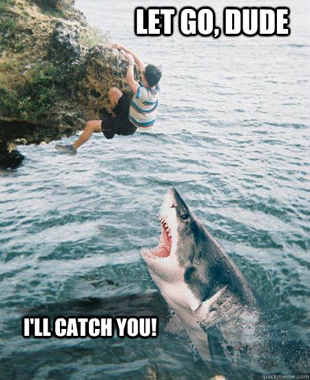 Let go, dude I'll catch you!