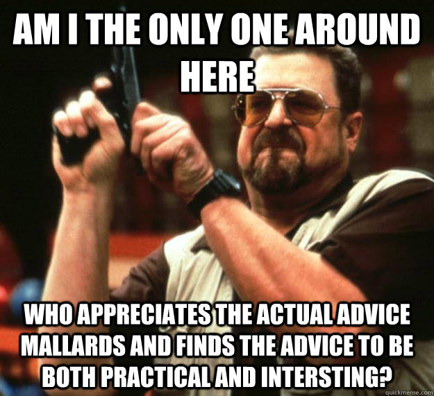 am I the only one around here who appreciates the actual advice mallards and finds the advice to be both practical and intersting?  Angry Walter
