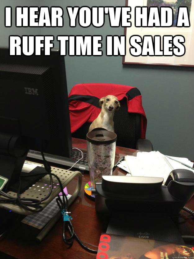 I hear you've had a ruff time in sales  - I hear you've had a ruff time in sales   Misc