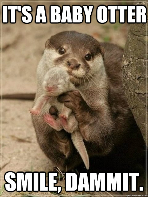it's a baby otter smile, dammit. - it's a baby otter smile, dammit.  BE HAPPY