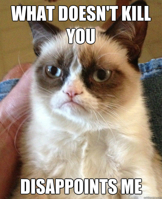 WHAT DOESN'T KILL YOU DISAPPOINTS ME  Grumpy Cat
