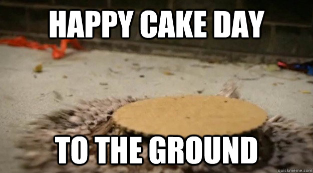 Happy Cake day To the ground - Happy Cake day To the ground  What do I look like, a charity case