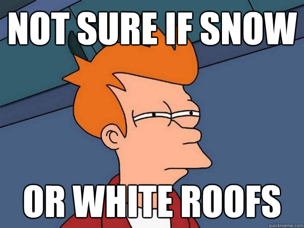 Not sure if snow or white roofs - Not sure if snow or white roofs  Futurama Fry