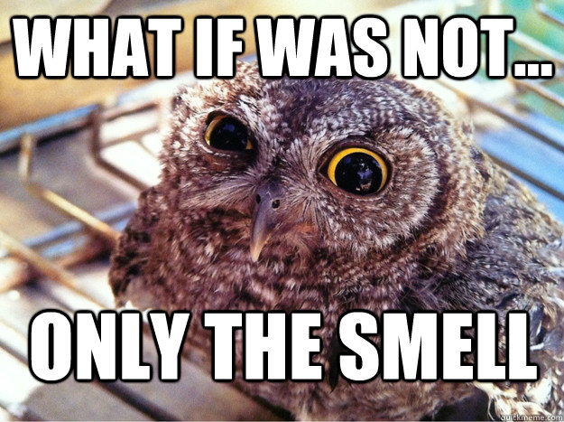 What if was not... Only the smell - What if was not... Only the smell  Skeptical Owl