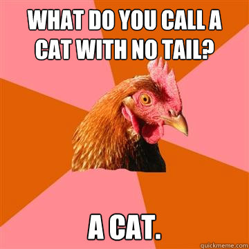 What Do You Call A Cat With No Tail A Cat Anti Joke Chicken