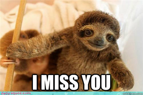 I miss you -  I miss you  i miss you baby sloth