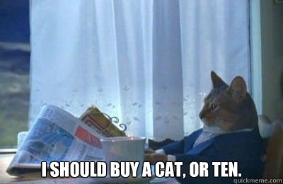 I should buy a cat, or ten. -  I should buy a cat, or ten.  Misc