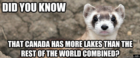 Did you know that Canada has more lakes than the rest of the world combined? - Did you know that Canada has more lakes than the rest of the world combined?  Fun-Fact-Ferret