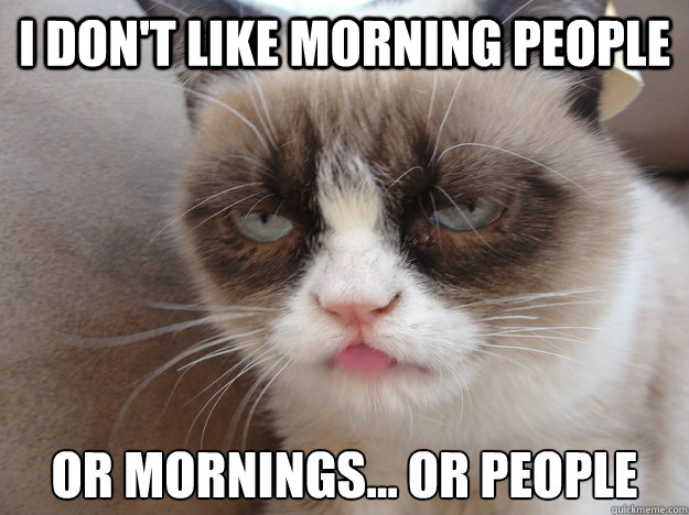 I DON'T LIKE MORNING PEOPLE OR MORNINGS... OR PEOPLE  i HATE MORNING PEOPLE
