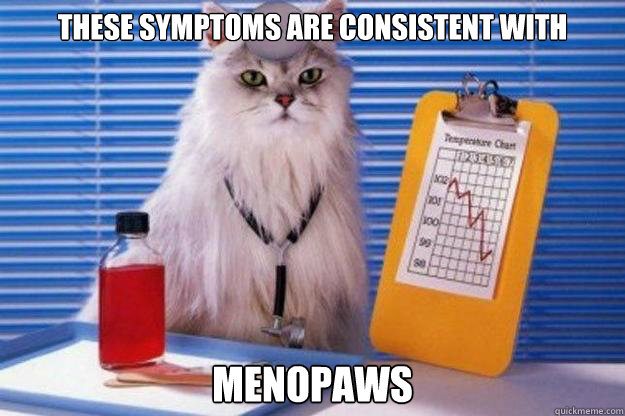 these symptoms are consistent with menopaws  Doctor Cat