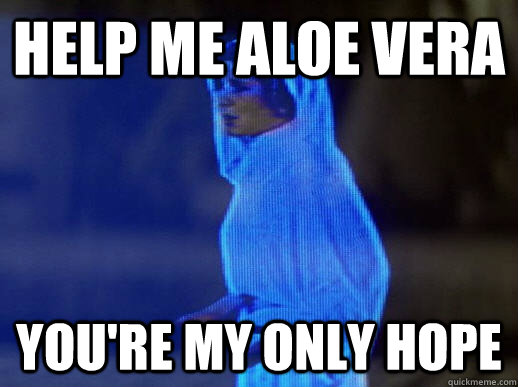 Help me aloe vera you're my only hope - Help me aloe vera you're my only hope  help me obi-wan kenobi