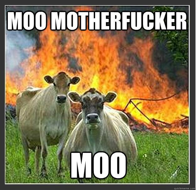 Moo Motherfucker Moo - Moo Motherfucker Moo  Evil cows