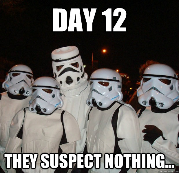day 12 they suspect nothing    - misc