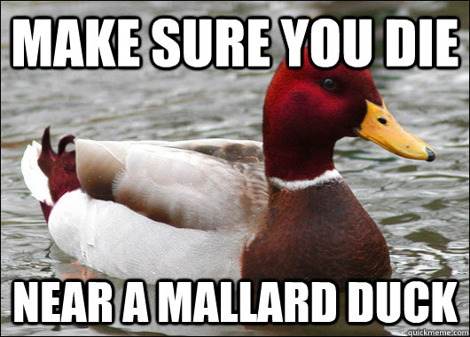 make sure you die near a mallard duck - make sure you die near a mallard duck  Malicious Advice Mallard