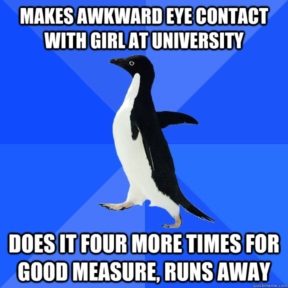 Makes awkward eye contact with girl at university does it four more times for good measure, runs away - Makes awkward eye contact with girl at university does it four more times for good measure, runs away  Socially Awkward Penguin
