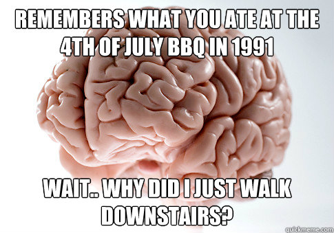 Remembers what you ate at the 4th of July bbq in 1991 Wait.. why did I just walk downstairs? - Remembers what you ate at the 4th of July bbq in 1991 Wait.. why did I just walk downstairs?  Scumbag Brain