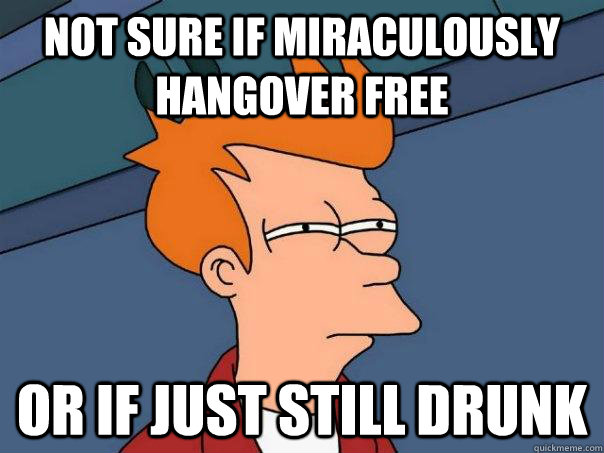 Not sure if miraculously hangover free or if just still drunk - Not sure if miraculously hangover free or if just still drunk  Futurama Fry